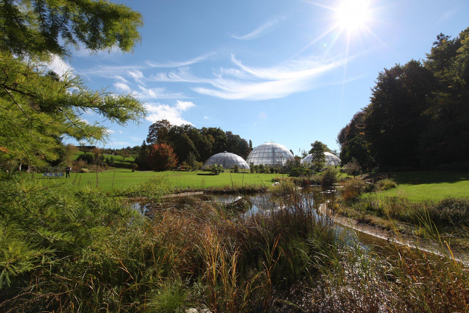 Botanischer Garten - SunSquare Sonnensegel