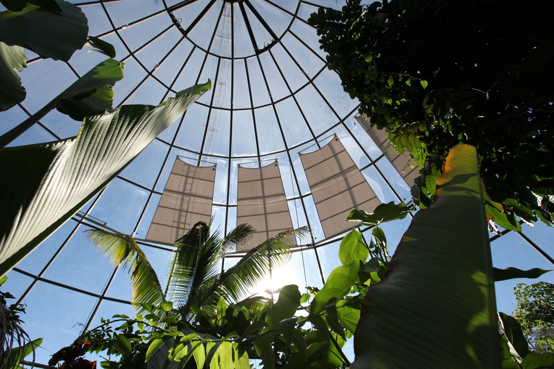 Botanischer Garten Zürich - SunSquare Sonnensegel