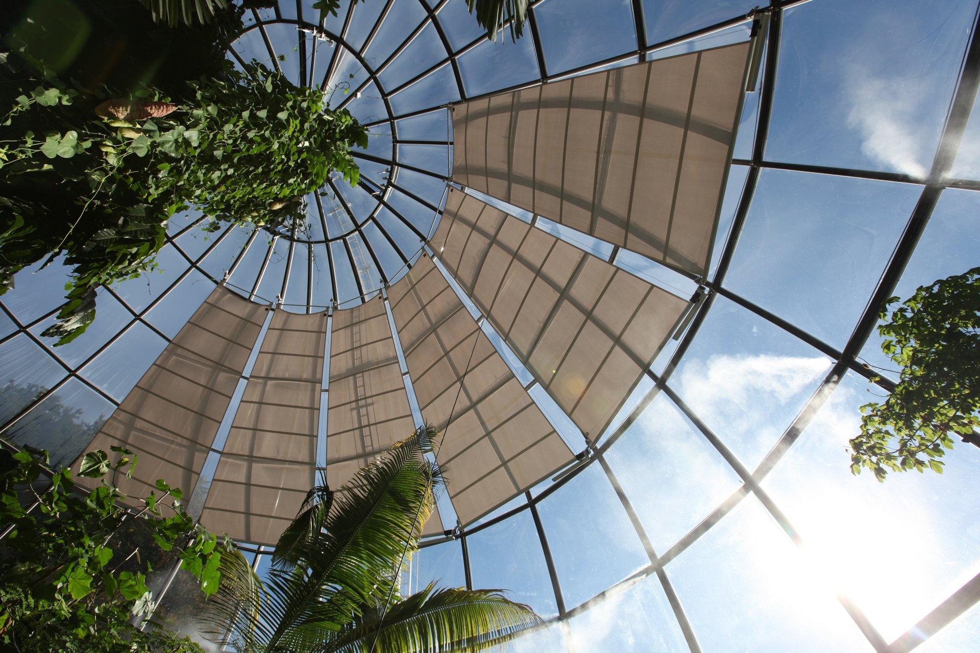 Botanischer Garten Zürich - SunSquare Indoor Segel