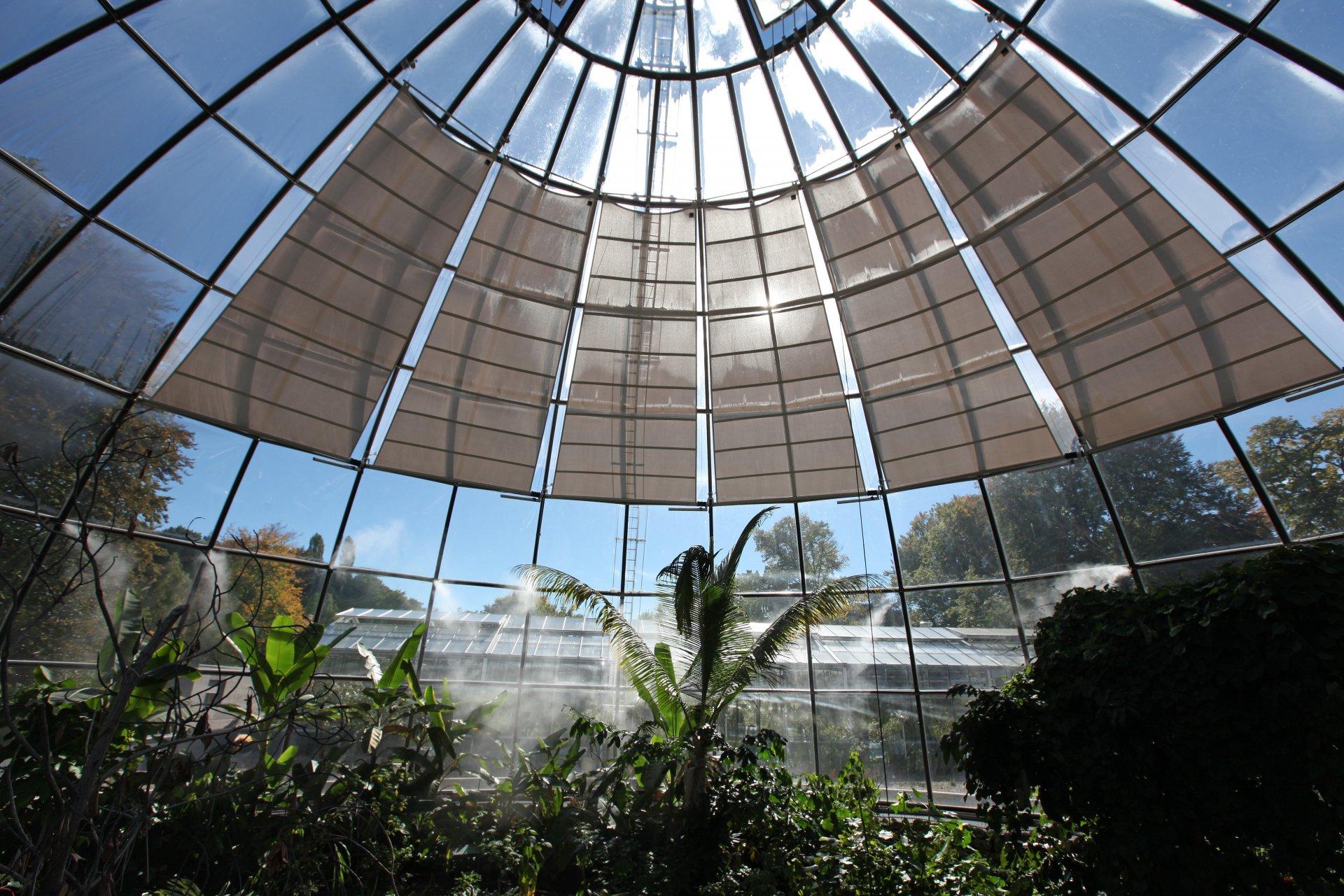 Botanischer Garten Zürich - SunSquare Segel indoor